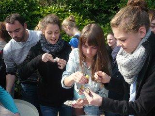 Ob Austern wohl schmecken? (Foto: T. Großerhode/ SMMP)